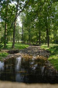 Northkill Creek