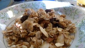 granola4